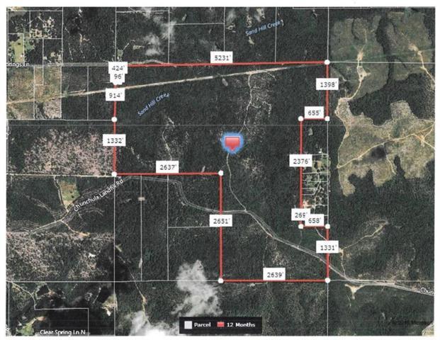 0 Chunchula Landfill Road, Chunchula, AL 36521 (MLS #629270) :: Berkshire Hathaway HomeServices - Cooper & Co. Inc., REALTORS®