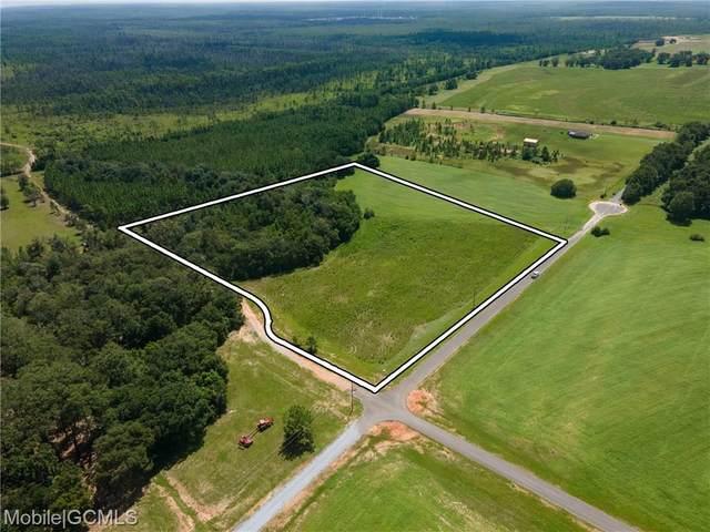 0 Walker Rd, Irvington, AL 36544 (MLS #631924) :: Berkshire Hathaway HomeServices - Cooper & Co. Inc., REALTORS®