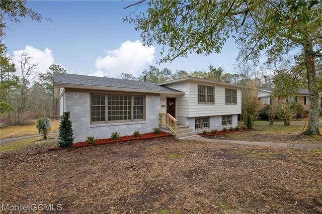 208 Cache Circle, Chickasaw, AL 36611 (MLS #648337) :: Elite Real Estate Solutions