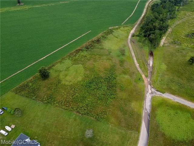 0 Lanier Lane, Chunchula, AL 36521 (MLS #658010) :: JWRE Powered by JPAR Coast & County