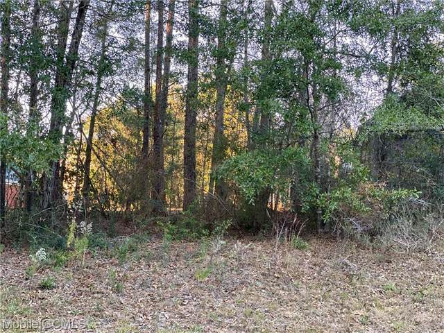 0 Clear Pointe Court #20, Mobile, AL 36618 (MLS #647023) :: Berkshire Hathaway HomeServices - Cooper & Co. Inc., REALTORS®