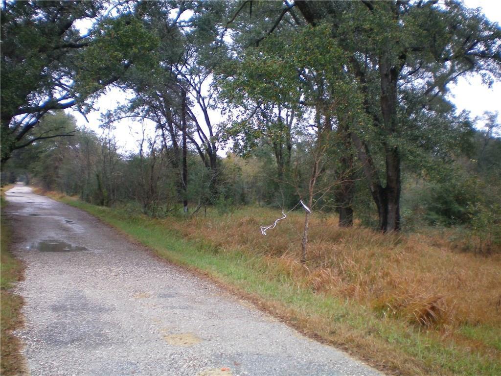 0 Creola Axis Loop Road - Photo 1