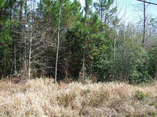 61 Highway 45, Eight Mile, AL 36613 (MLS #542144) :: Jason Will Real Estate