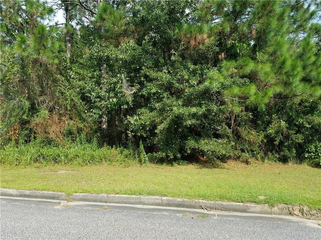 0 Bent Tree Road - Photo 1