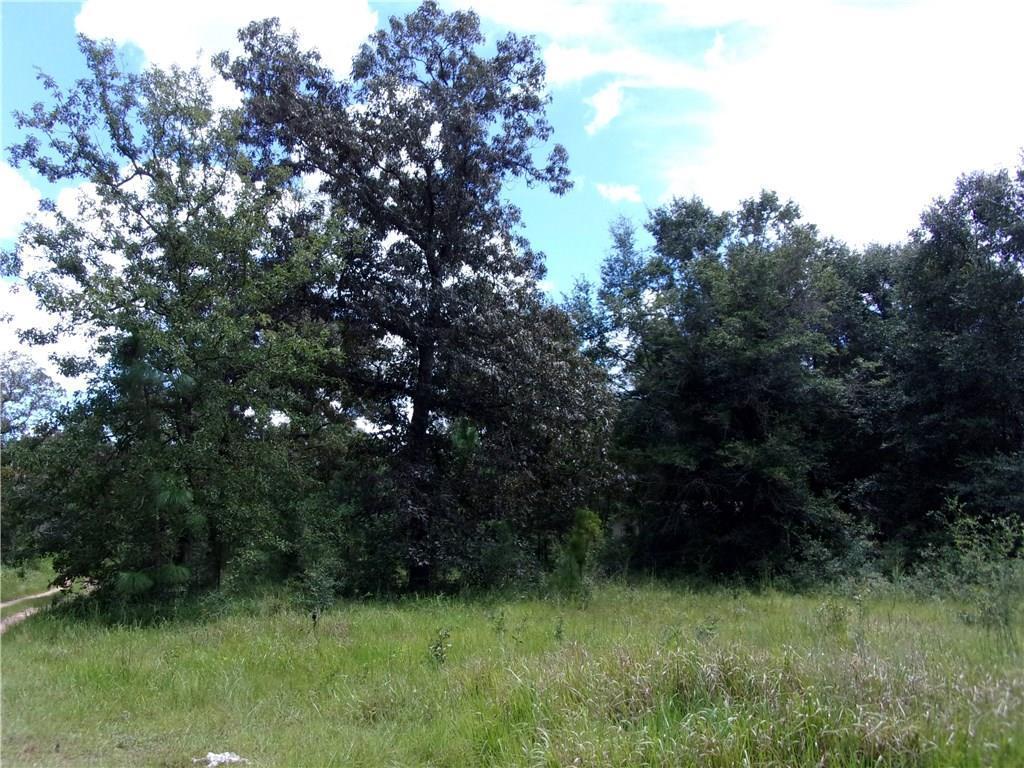 5914 Hunters Woods Drive - Photo 1