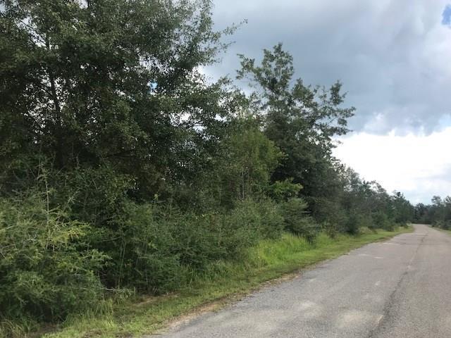 0 Turnerville Woods, #31, Chunchula, AL 36521 (MLS #619062) :: Jason Will Real Estate