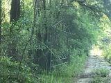 1199 Cody Road - Photo 3