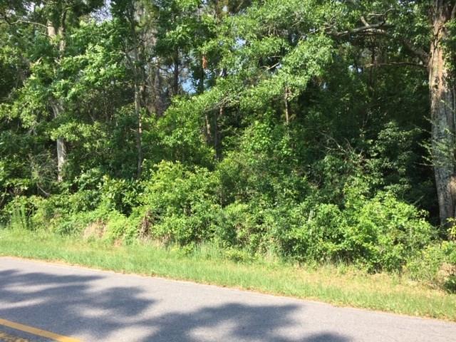 27180 County Road 54 - Photo 1