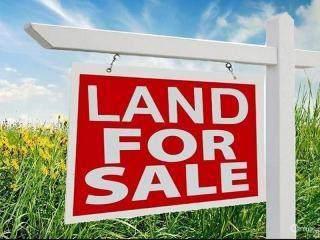 0 Dead Lake Road #2, Creola, AL 36525 (MLS #632201) :: Berkshire Hathaway HomeServices - Cooper & Co. Inc., REALTORS®