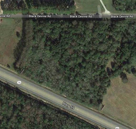 0 State Highway 59 S, Loxley, AL 36551 (MLS #634602) :: JWRE Powered by JPAR Coast & County
