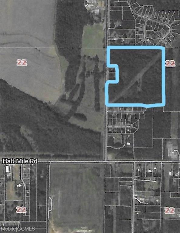 9111 Padgett Switch Road - Photo 1