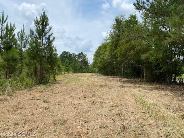 0 Box Road #2, Semmes, AL 36575 (MLS #642009) :: JWRE Powered by JPAR Coast & County