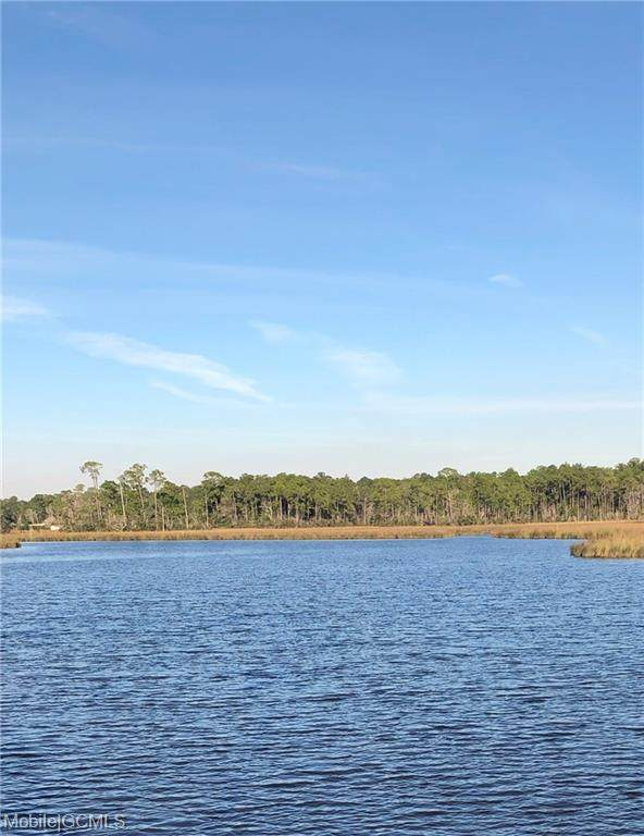 0 Palmeto Point #14, Theodore, AL 36582 (MLS #642328) :: Mobile Bay Realty