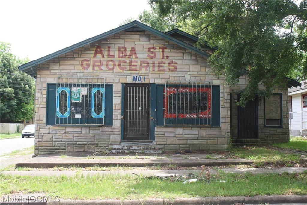 1151 Alba Street - Photo 1