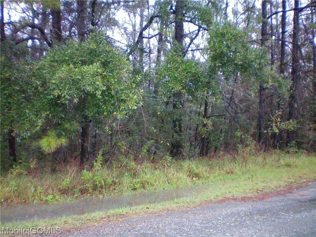 315 Highway 43 - Photo 1