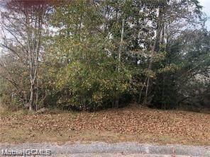 0 Pearson Lane #31, Wilmer, AL 36587 (MLS #645413) :: Berkshire Hathaway HomeServices - Cooper & Co. Inc., REALTORS®