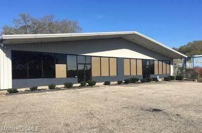 1153 Schillinger Road N, Mobile, AL 36608 (MLS #645822) :: Mobile Bay Realty