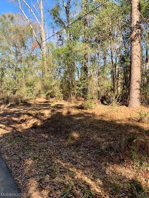 0 Durant Avenue #20, Eight Mile, AL 36613 (MLS #648770) :: Mobile Bay Realty