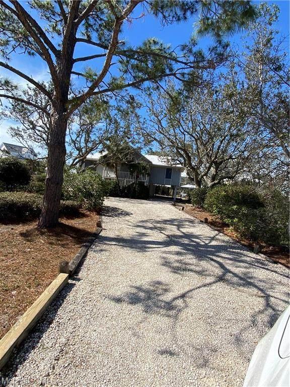 32789 Marlin Key Drive - Photo 1