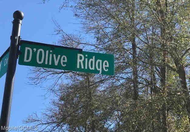29910 D'olive Ridge, Daphne, AL 36527 (MLS #650365) :: Elite Real Estate Solutions