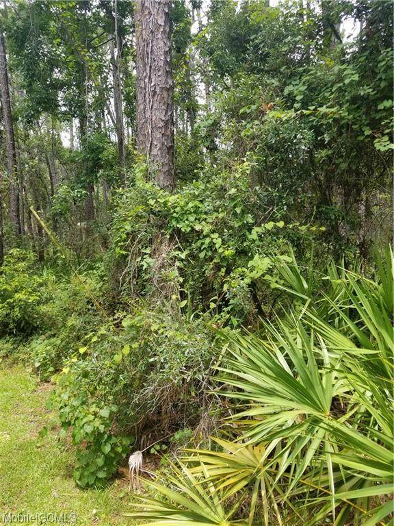 1106 Narbonne Place, Dauphin Island, AL 36528 (MLS #654806) :: Mobile Bay Realty