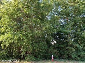 0 Willow Walk Drive #3, Saraland, AL 36571 (MLS #655276) :: Mobile Bay Realty
