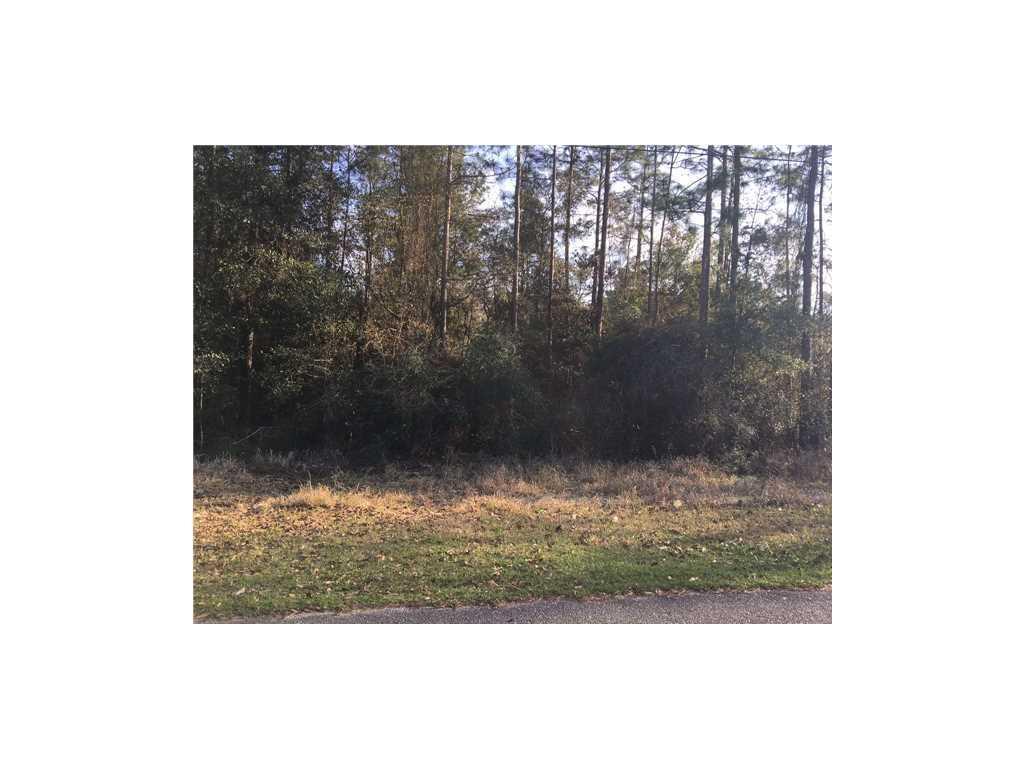 0 Timber Creek Drive - Photo 1