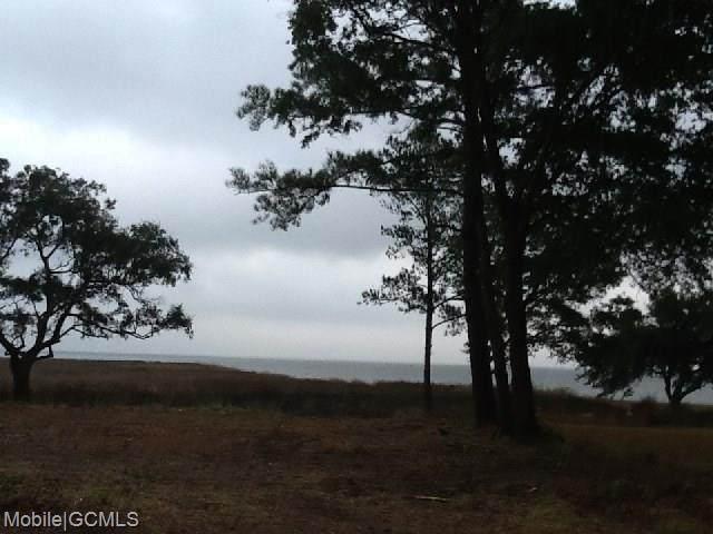 11355 East Point Road #6, Theodore, AL 36582 (MLS #623034) :: JWRE Powered by JPAR Coast & County