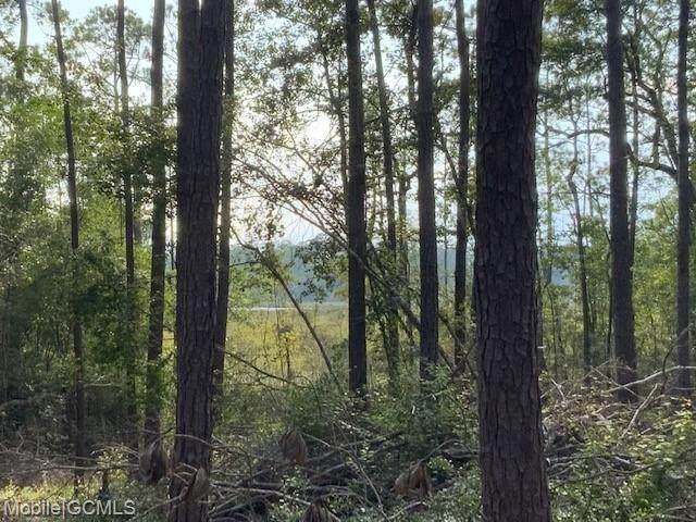 0 Pinetop Road, Coden, AL 36523 (MLS #655500) :: Mobile Bay Realty