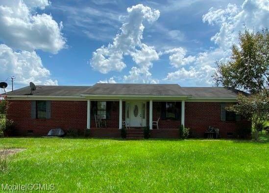 15075 Butler Road, Wilmer, AL 36587 (MLS #644647) :: JWRE Powered by JPAR Coast & County