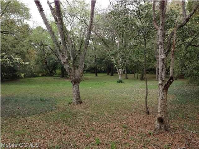 5308 Old Shell Road - Photo 1