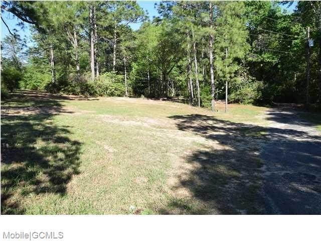 6611 Cottage Hill Road - Photo 1