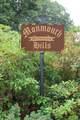 8 Serpentine Drive - Photo 52