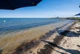 1502 Beach Boulevard - Photo 35