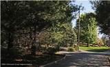 38 Cedar Drive - Photo 3