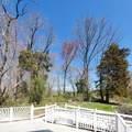 209 Province Line Road - Photo 2