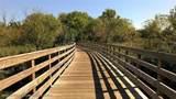 78 Cypress Neck Road - Photo 56