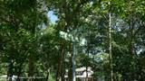 0 Southern Boulevard - Photo 3