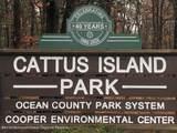 1214 Cattus Island Boulevard - Photo 19