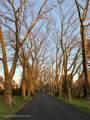 126 Buttonwood Drive - Photo 2
