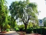 427 Cedar Drive - Photo 40