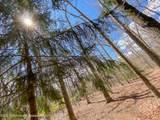 255 Metedeconk Trail - Photo 23