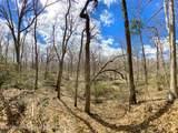 255 Metedeconk Trail - Photo 25
