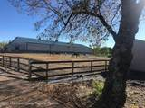 430 Colts Neck Road - Photo 9