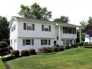 4 Dina Place, Jackson, NJ 08527 (MLS #21626095) :: The Dekanski Home Selling Team