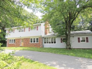 10 Overlook Drive, Holmdel, NJ 07733 (MLS #21627747) :: The Dekanski Home Selling Team