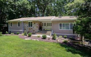 30 Mount Drive, Holmdel, NJ 07733 (MLS #21629035) :: The Dekanski Home Selling Team