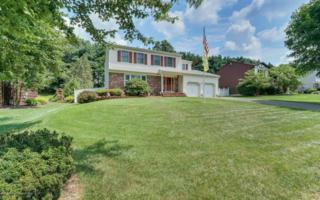 16 Tracy Drive, Manalapan, NJ 07726 (MLS #21640203) :: The Dekanski Home Selling Team