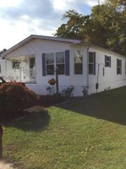 18 Alissa Terrace, Jackson, NJ 08527 (MLS #21640313) :: The Dekanski Home Selling Team