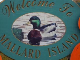 0 W Mallard Drive, Beach Haven West, NJ 08050 (MLS #21640803) :: The Dekanski Home Selling Team
